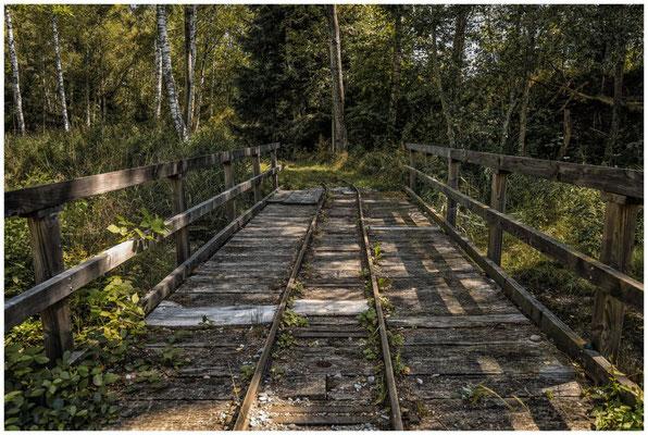 Schienen für's Torfbähnle im Wurzacher Ried 3832