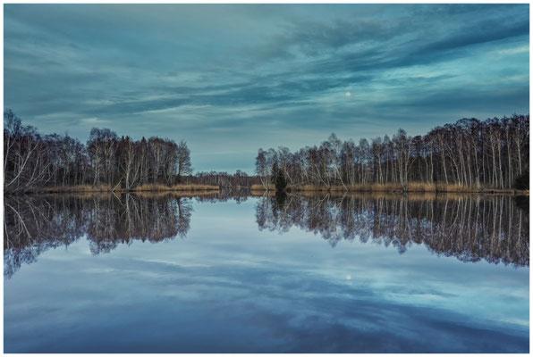 Moorsee im Pfrunger-Burgweiler Ried 1929