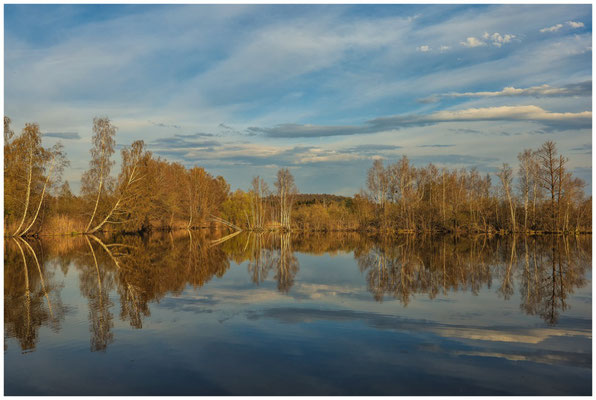 Uferlandschaft Nillsee 2237