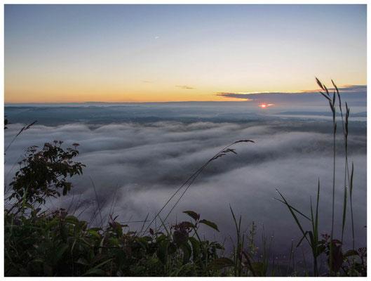 9140 Hegau im Nebel
