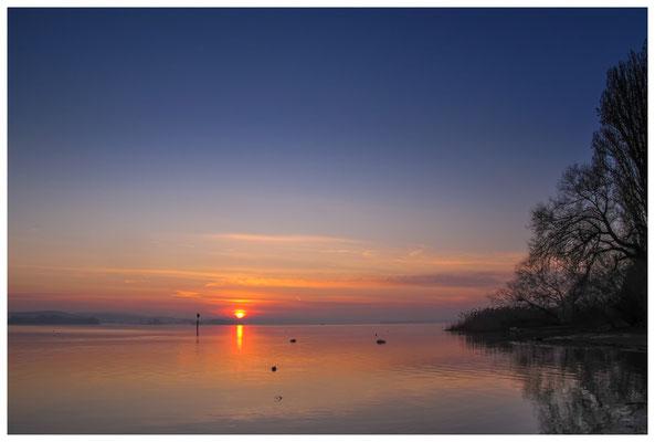 Sonnenaufgang im Jachthafen Iznang 3258