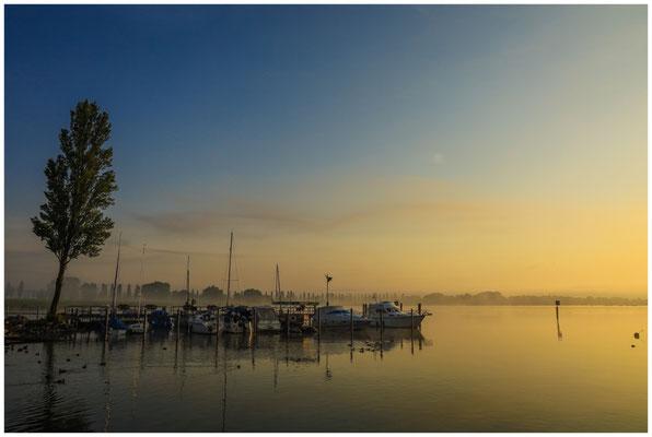 Morgenstimmung im Jachthafen von Moos 3557