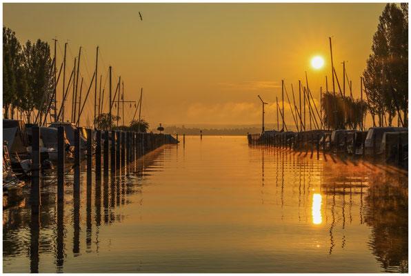 Jachthafen Moos im Morgenlicht 0582