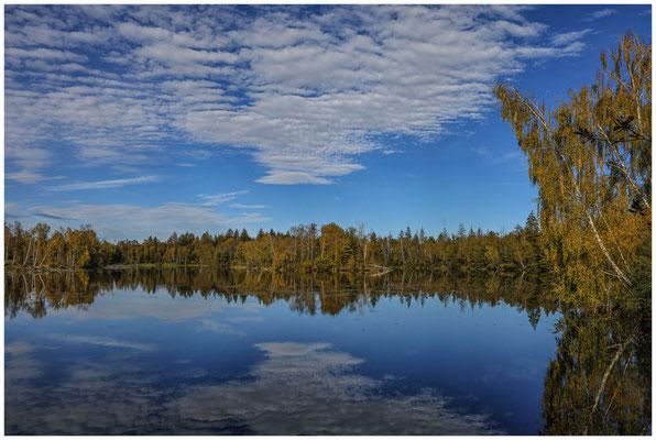 Wolkenspiegelung am Vogelsee - Pfrunger-Burgweiler Ried 4439