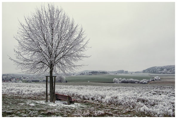 2214 Winterlandschaft