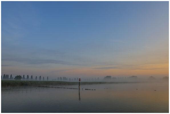 Morgendämmerung über dem Aachried und dem Zeller See 3505