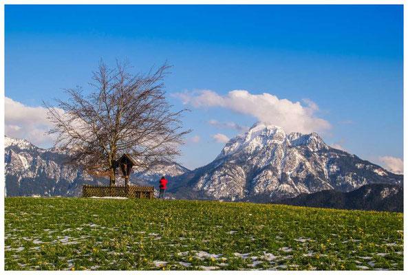 """Aussichtspunkt """"Zur schönen Buche"""" mit Blick auf den """"Säuling"""" - Füssens Hausberg"""