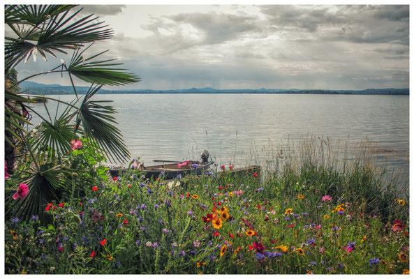 Blumenbeet und Fischerboot mit Blick auf die Hegauberge 9232