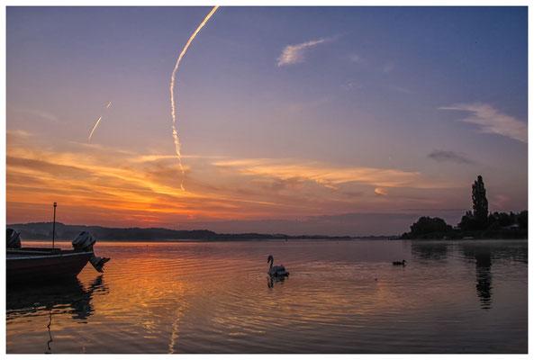 Morgendämmerung auf der Insel Reichenau 0068