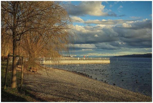 Ufer bei Ludwigshafen mit Blick auf den Überlinger See und den Bodanrück 2079