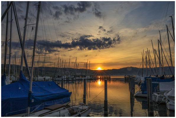 Sonnenaufgang im Jachthafen Bodman  2885