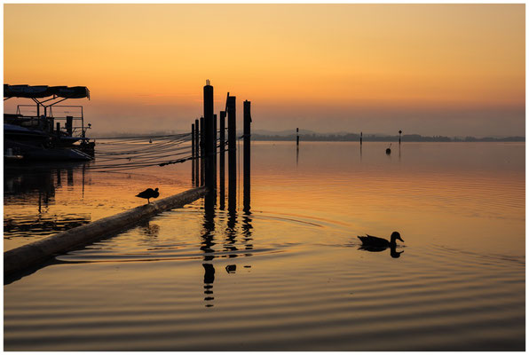 Morgendämmerung über dem Zeller See 0499