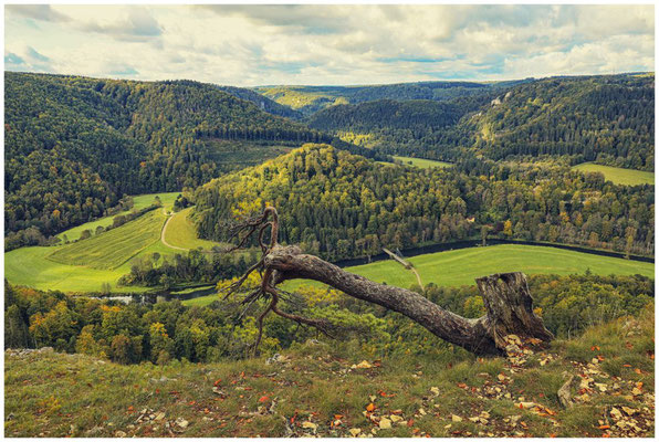 Blick vom Bandfelsen in das Donautal 8222