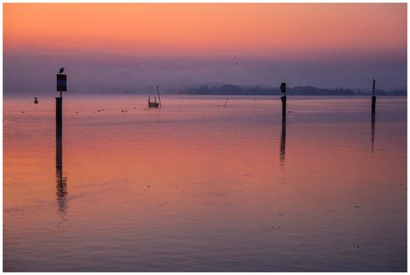 Morgendämmerung über dem Zeller See 0458