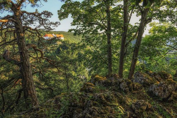Burg Wildenstein vom Bandfelsen aus gesehen 7845