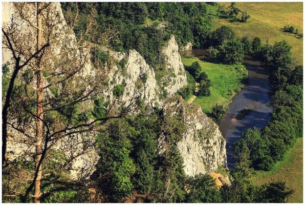 Blick auf den Stiegelesfelsen und die Donau 7951
