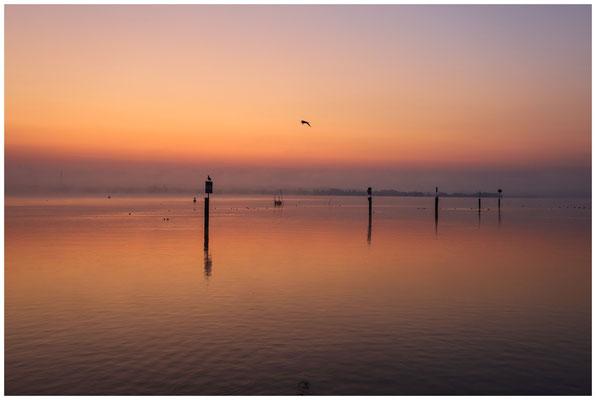 Morgendämmerung über dem Zeller See 0477