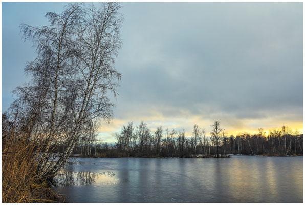 Uferlandschaft Nillsee 5267