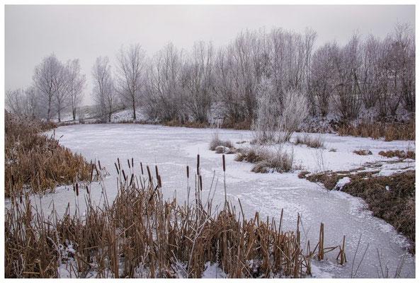 Winterlandschaft mit Raureif bei Stockach 2577