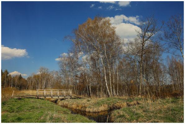 Landschaft mit Holzbrücke im Pfrunger-Burgweiler Ried 6631