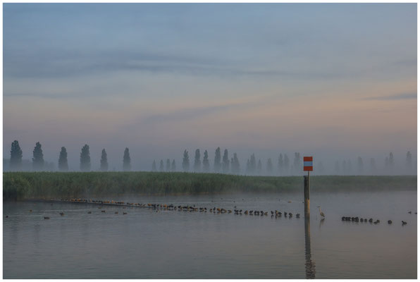 Morgendämmerung über dem Aachried und dem Zeller See 3504