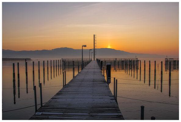 Steganlage Jachthafen Bodman bei Sonnenaufgang 3091
