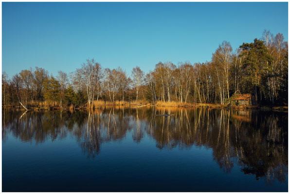 Uferlandschaft Moorteich mit Hütte im Pfrunger-Burgweiler Ried 6674