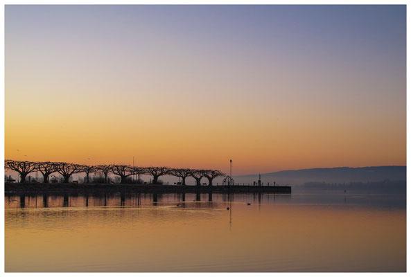 Morgendämmerung an der Radolfzeller Mole - mit Blick auf die Halbinsel Höri 2644