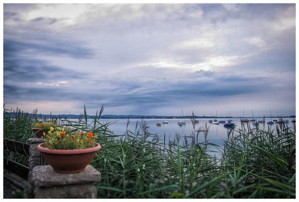 Blick von der Terrasse des Seerestaurants Schlössli auf den Untersee 9277