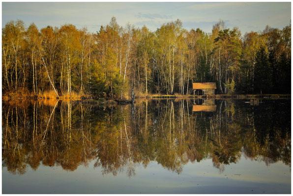 Uferlandschaft Moorsee mit Hütte 2193