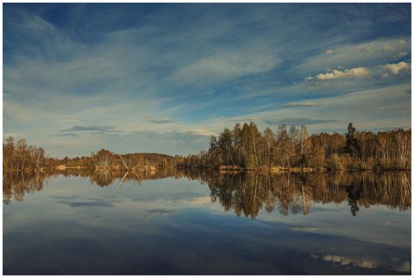 Uferlandschaft Nillsee 2218