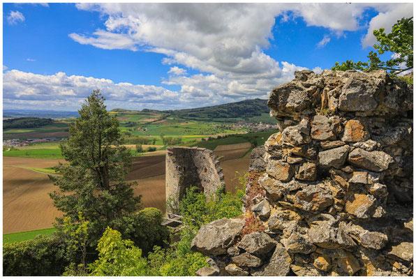 Blick vom Mägdeberg in die Hegaulandschaft 7123