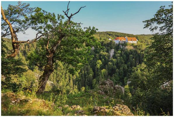 Burg Wildenstein vom Bandfelsen aus gesehen 7838