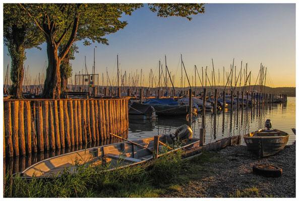 Yachthafen und Fischerboote auf der Insel Reichenau bei Sonnenaufgang 9519