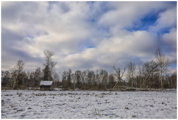 Hütte im Pfrunger-Burgweiler Ried 5476