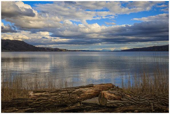 """Uferweg NSG """"Bodenseeufer"""" mit Blick auf den Überlinger See 2050"""