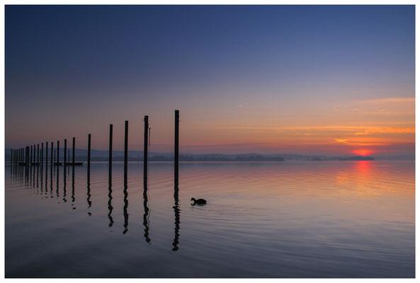 Morgendämmerung im Jachthafen Iznang 3242
