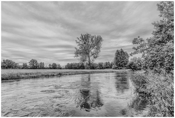 Uferlandschaft Aach zwischen Beuren und Hausen 7650
