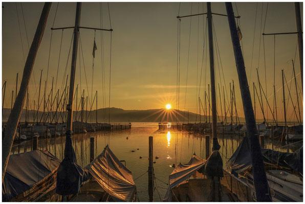 Sonnenaufgang Jachthafen Bodman 4029