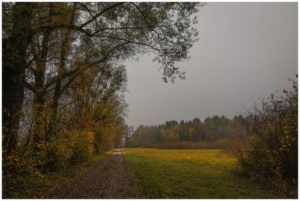 Fußweg zwischen Beuren und Hausen 4654