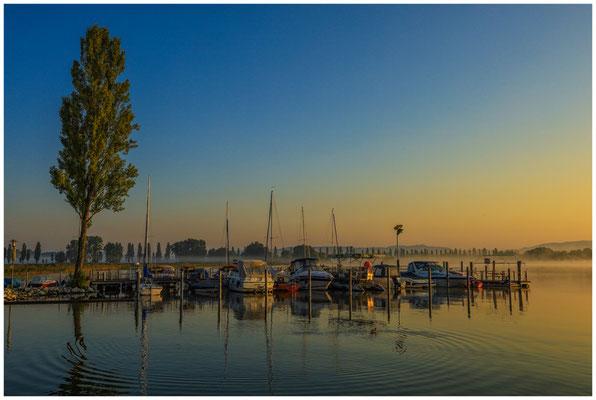Boote im Jachthafen von Moos im Morgenlicht 0593