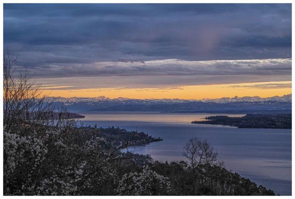 Blick vom Haldenhof über den Überlinger See und die Alpenkette 3871