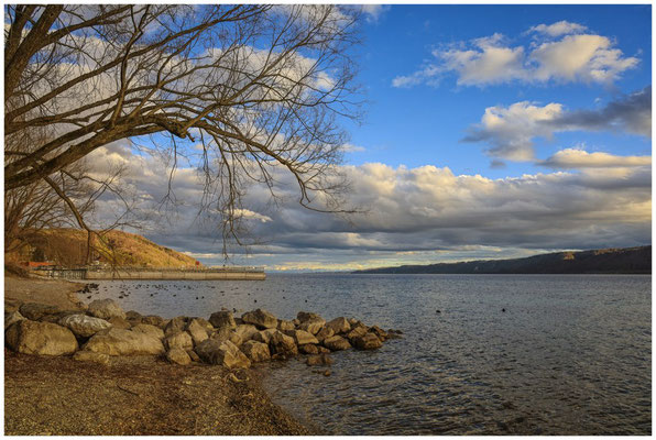 Ufer bei Ludwigshafen mit Blick auf den Überlinger See und den Bodanrück 2071