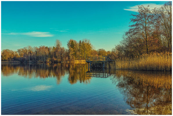 Uferlandschaft Böhringer See 1565
