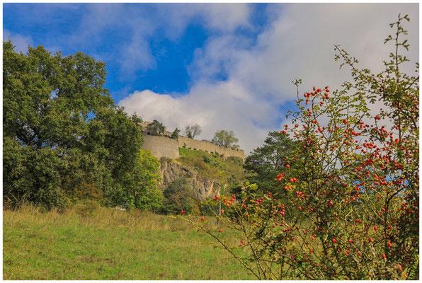 Hohentwiel - Blick auf die Obere Festung 8169