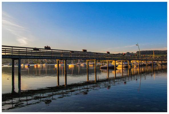 Steg Schiffsanleger Hemmenhofen mit Yachthafen bei Morgenlicht 9814