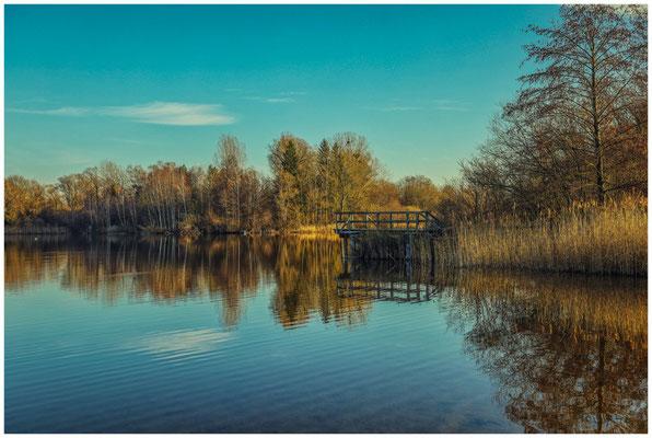 Uferlandschaft Böhringer See 1567