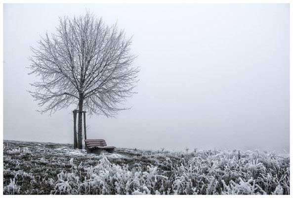 "2122 ""Seltsam im Nebel zu wandern..."""