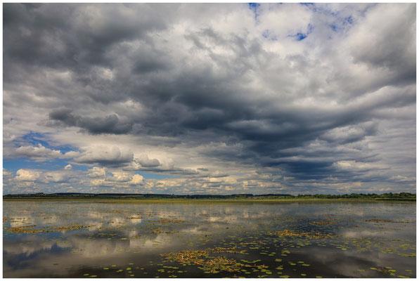 Uferlandschaft Federsee mit dunklen Wolken 3408