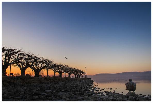 """Morgendämmerung an der Radolfzeller Mole - mit Kunstwerk """"El Nino"""" von Ubbo Enninga 2726"""